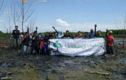 Penggalangan Dana Penanaman Mangrove di Semarang oleh GeoJateng dan Komunitas Lindungi Hutan